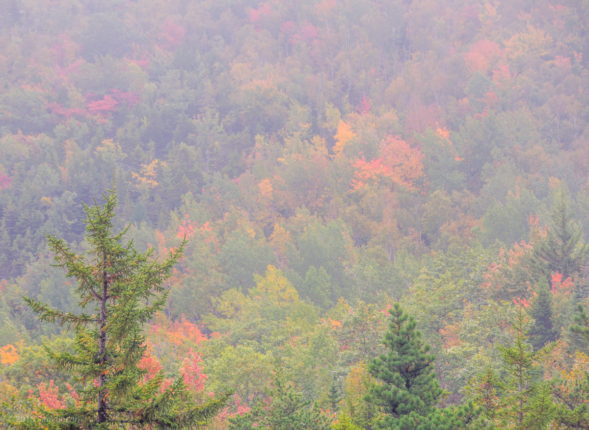 5-autumn-pictures-fog-and-mist