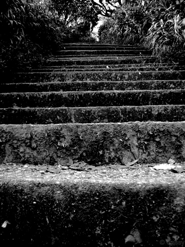 Steps at Adam's peak