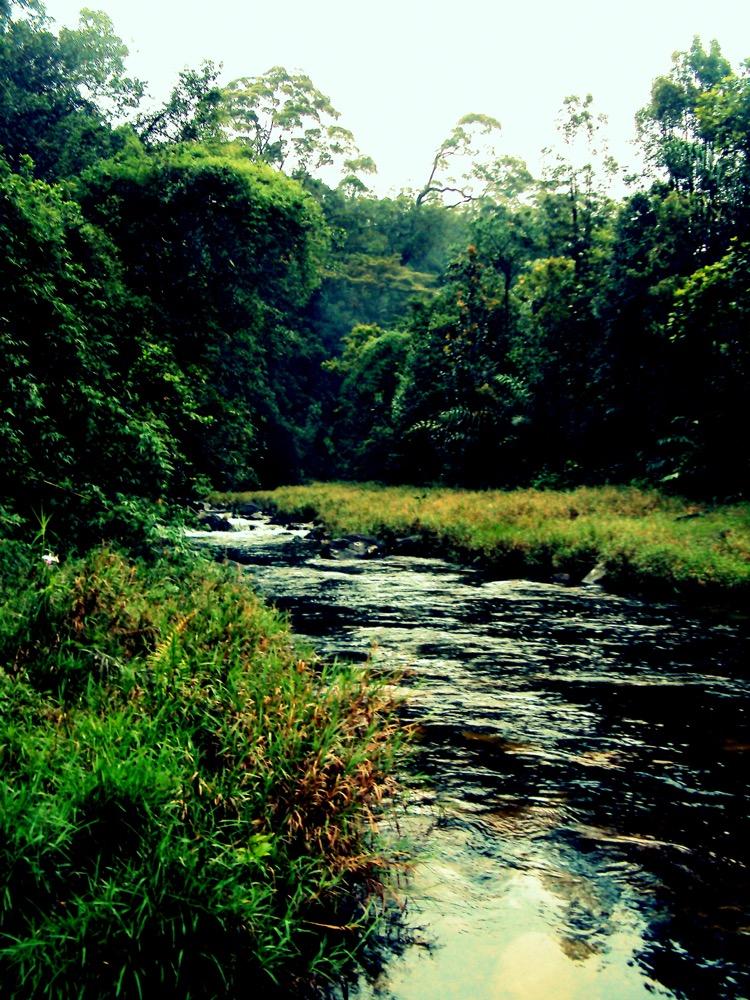 Seetha Gangula on Kuruvuta Eratna route